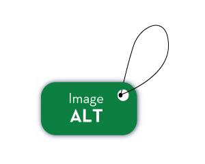 Alt-tekst: voor SEO en toegankelijkheid