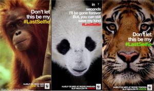 Screenshot van Snapchat van Wereld Natuurfonds campagne.
