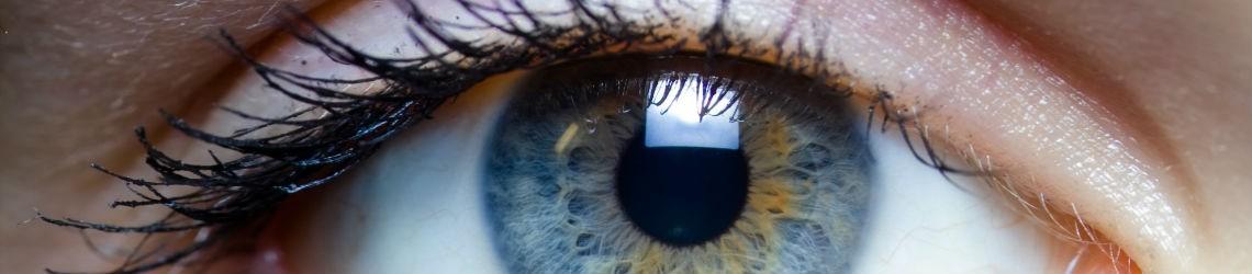 Menselijk oog