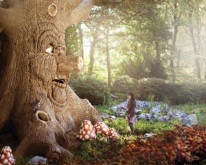 Storytelling als businessmodel: waarom de Efteling zo succesvol is