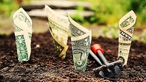Blog-beste-kpis-voor-contentmarketing-money