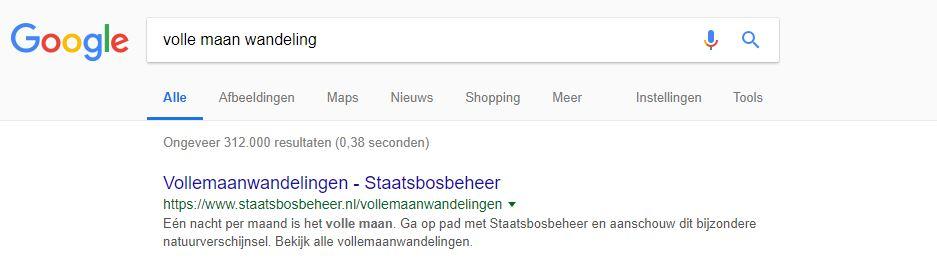 Zoekresultaat op Google met meta description